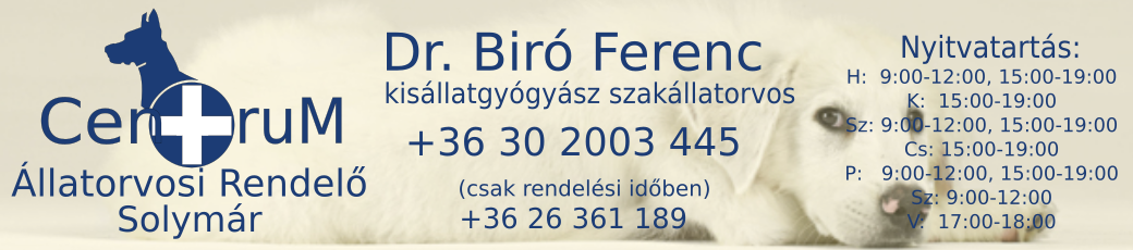 Állatorvosi Rendelő, Solymár  – Centrum Állatorvosi Rendelő
